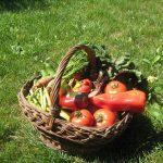 Analiză preliminară. Chestionar privind produsele agroalimentare ecologice