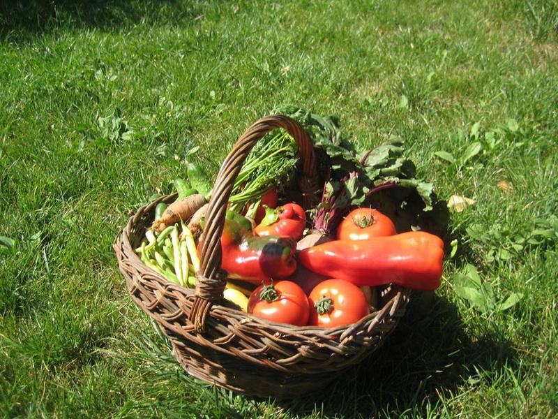 Cos cu legume