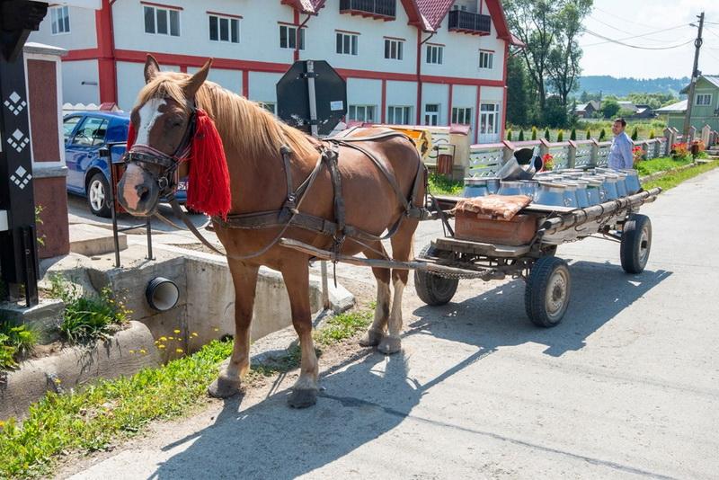 Căruță în Bucovina